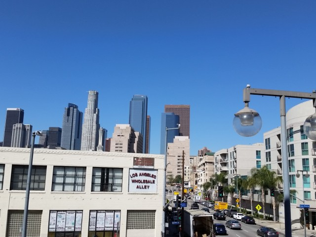 Downtown Los Angeles Views